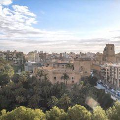 Elche, la ciudad de las palmeras